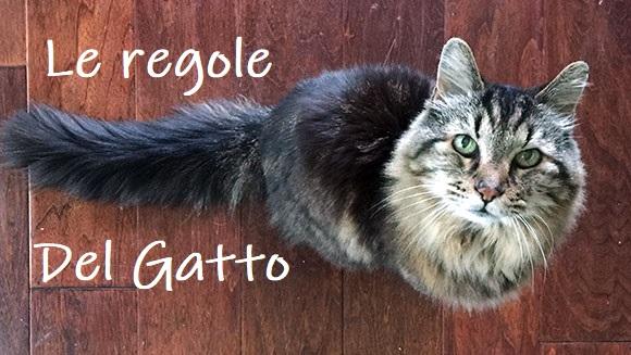 Le regole del gatto u i gatti conquisteranno il mondo